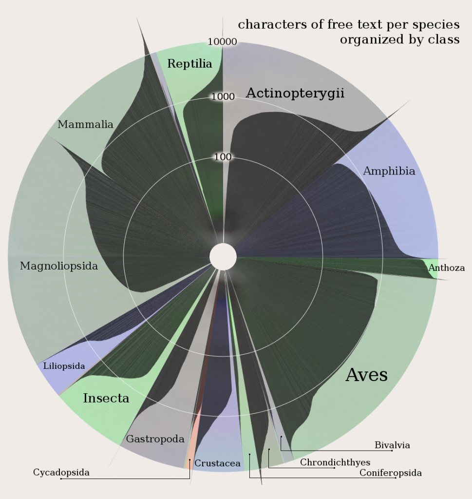 Amount of writing about species by class in the IUCN Red List Database