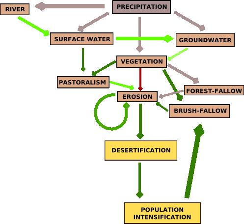 A Socio-Environmental Model