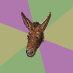 Orbis Donkey
